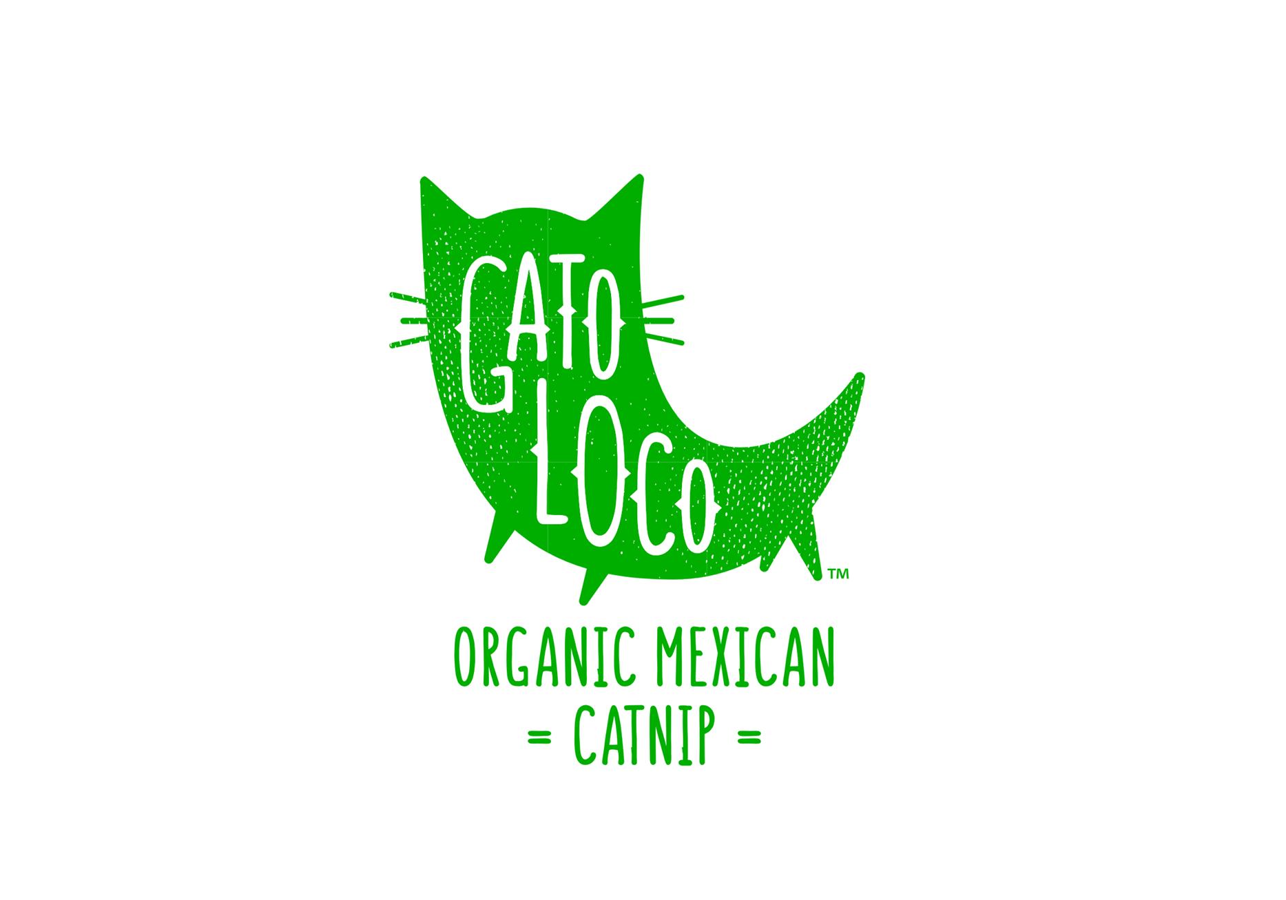 GATO-LOCO-1